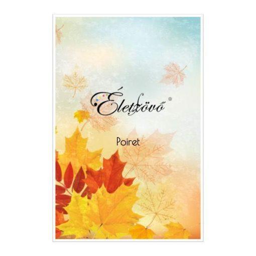 Egyedi előlap (fall leaves)
